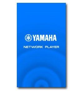 NETWORK PLAYER CONTROLLER - Introducción